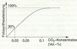 Wirkungsgrad Fotosynthese